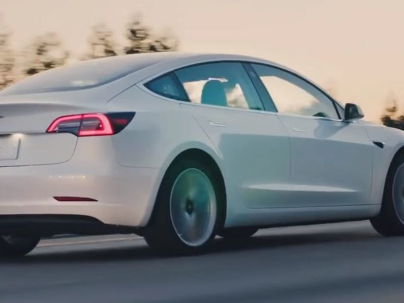 Life and death issue the survival of the Tesla Model 3
